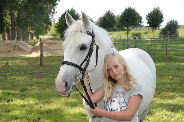 best pets for kids - horse